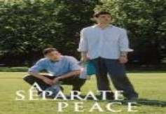 www.assignmentp::Separate Peace Novel